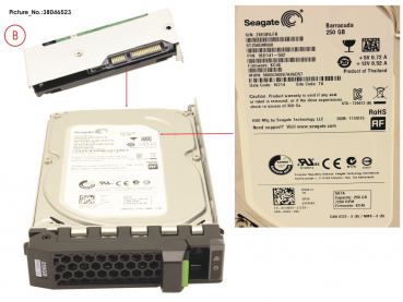 HD SATA 6G 250GB 7.2K HOT PL 3.5  ECO