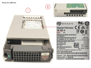 DX60 S2 HD SAS 300GB 10K 3.5 X1